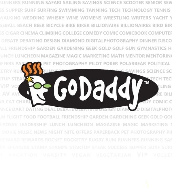 GoDaddy 2